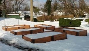 Larchmont_Snowy_Garden