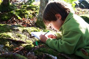 boy drawing nature